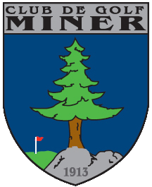 LOGO-MINER_close_cut.png